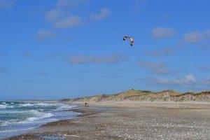 kitesurfing Denmark